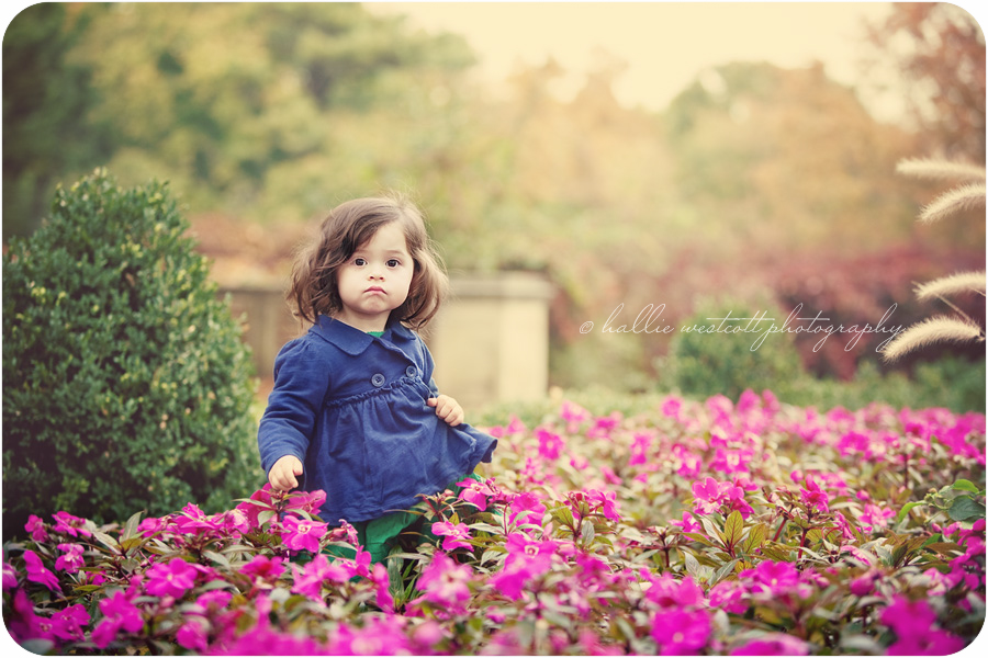 Photographer takes picture of little girl wandering through the blooms at Waveny House in New Canaan, CT