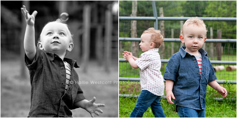 Photographer captures triplets during a family photography session at Northwest Park in Windsor, CT