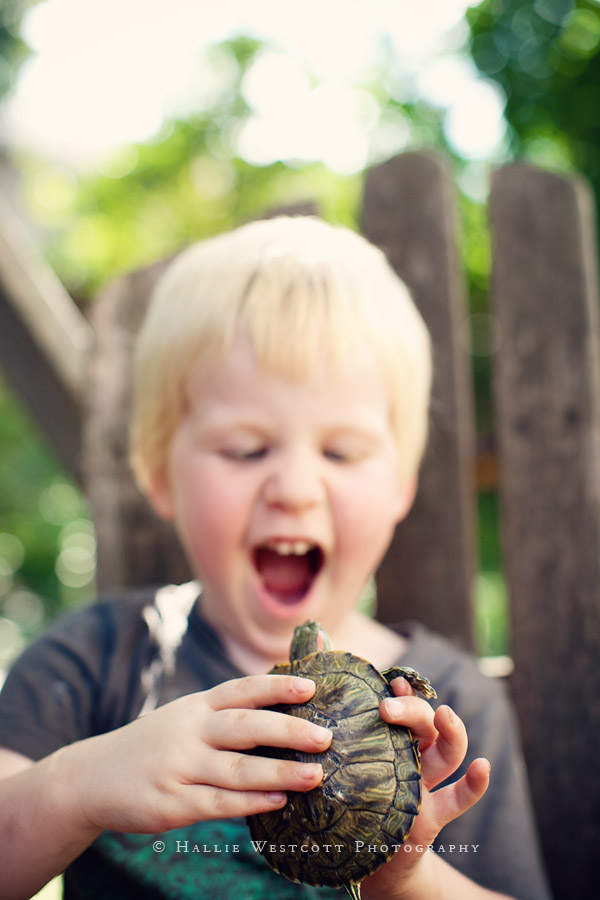 Portland, CT Child photographer captures a little boy and his turtle