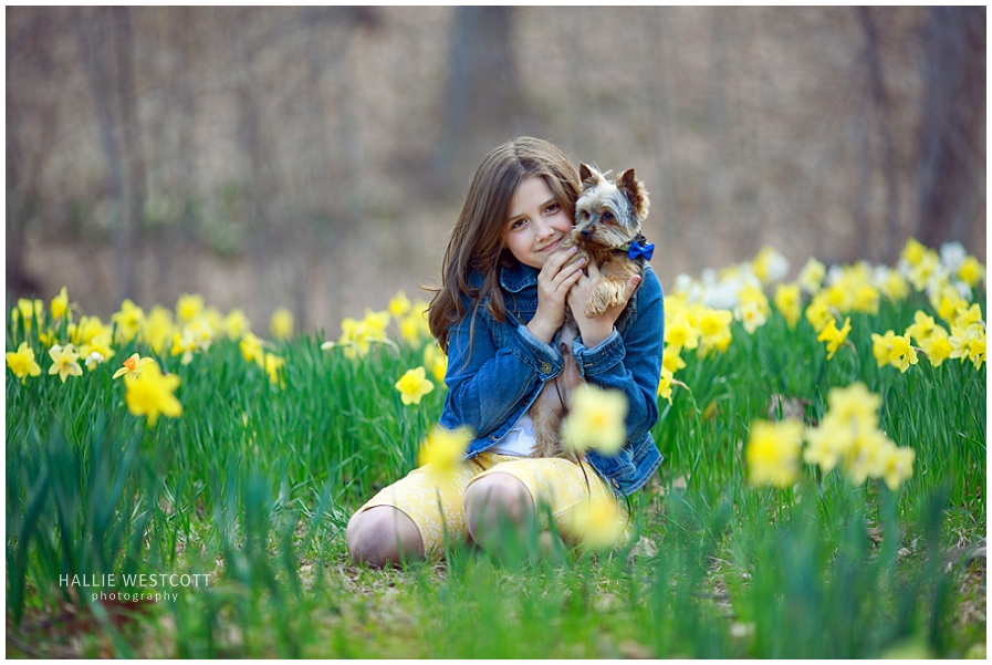 Girl holding her puppy in the daffodils during mini session