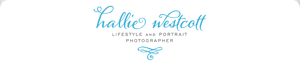 Connecticut Modern Portrait Photographer │ Hallie Westcott Photography LLC logo