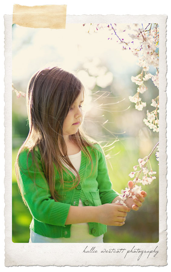 Photograph of a little girl investigating spring blooms in CT