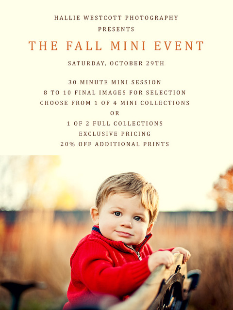 Suffield, CT photographer Hallie Westcott presents The Fall Mini Event at Northwest Park in Windsor, CT